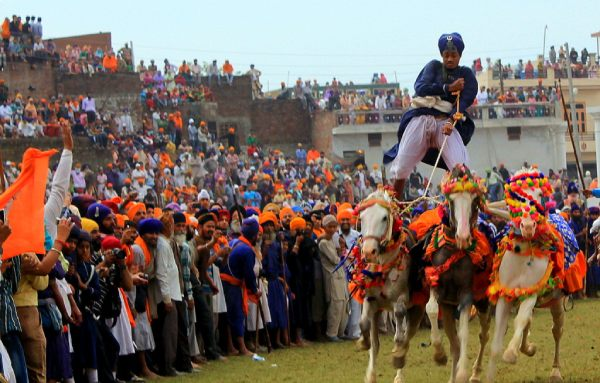 Horse riding during the festival of Hola Mohalla